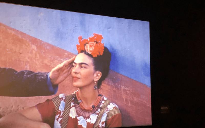 วีดีโอตัวแรกในห้องสีเทาที่อุทิศให้ชีวิตรักของฟรีดา